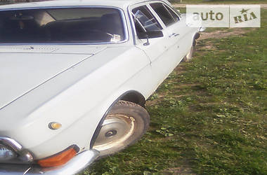 ГАЗ 24 1977 в Дрогобыче