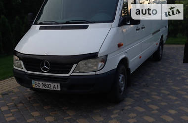 Mercedes-Benz Sprinter 313 груз.-пасс. 2003 в Кременце