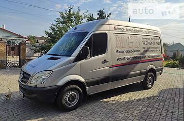 Mercedes-Benz Sprinter 313 груз. 2007 в Новограде-Волынском