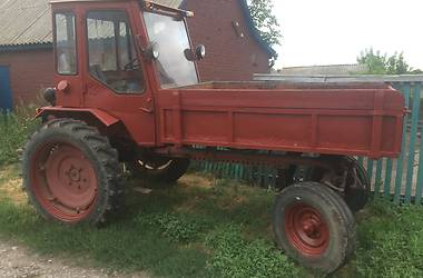 ООО Трактор ДВСШ 16 1993 в Лубнах