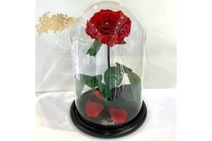 Красная роза в колбе Lerosh - Lux 33 см SKL15-279560