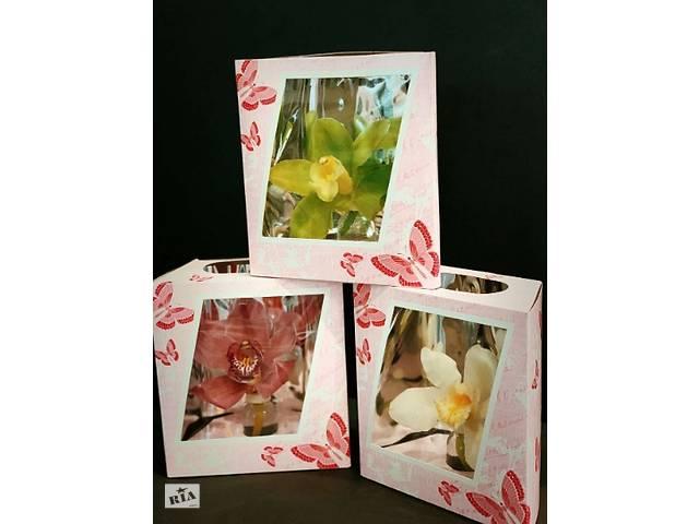 Орхідея 14 лютого, 8 березня, подарунок, орхідея.- объявление о продаже  в Благовіщенську (Ульяновка)