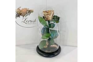 Золотая роза в колбе Lerosh - Classic 27 см SKL15-279532