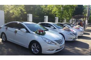 Авто на Свадьбу,Свадебные авто, Hyundai Sonata YF, Кортежи,(Владелец!)