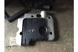 б/у Крышки мотора Hyundai Santa FE