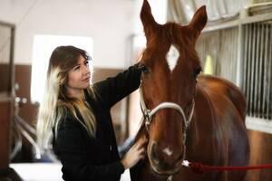 Подарунковий сертифікат урок взаємодії з конем