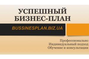 Бизнес-план, инвестиционный проект, ТЕО