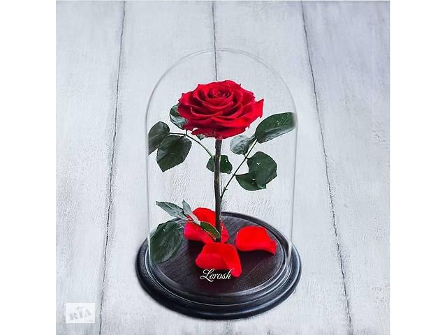 купить бу Стабилизированная роза в колбе Lerosh - Premium плюс 33 см, Красная SKL15-138939 в Одессе