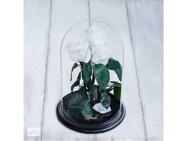 продам Стабилизированные три розы в колбе Lerosh - Standart 33 см, Белая SKL15-138956 бу в Одессе