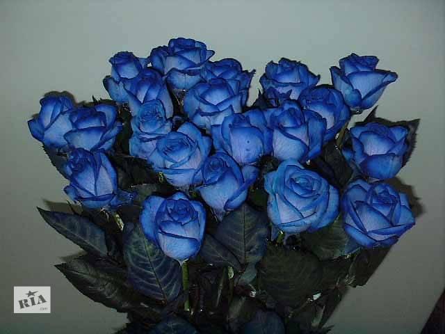 купить бу Доставка цветов в Винницкой области