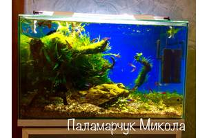 Декорации для аквариумов