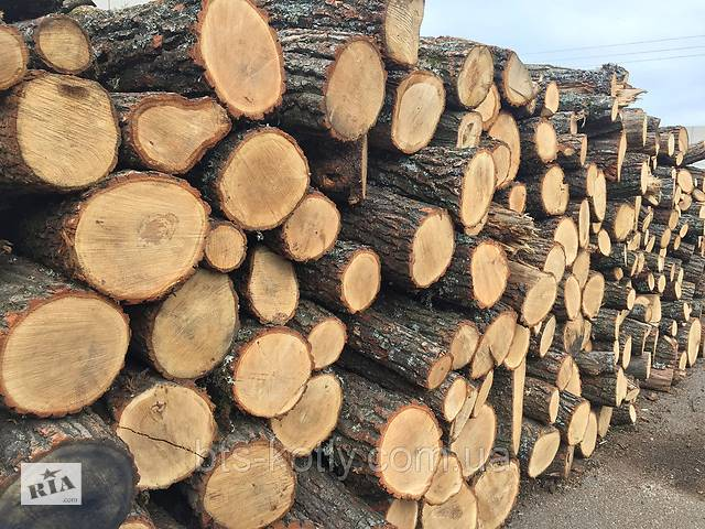 купить бу Грузоперевозки+продажа дров в Запорожье