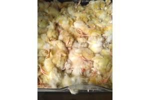 Суточные цыплята НА КОРМ заморозка фреткам, змеям,кошкам, совам, и др.