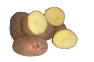 "Картопля столова ""Margarita"", 1 кг"