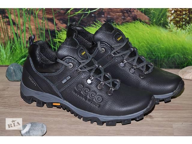 Кросівки шкіра М55 якість ECCO розмір 40 41 42 43 44 45- объявление о продаже  в Києві