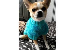 одежда/свитер для маленьких пород собак /чихуахуа