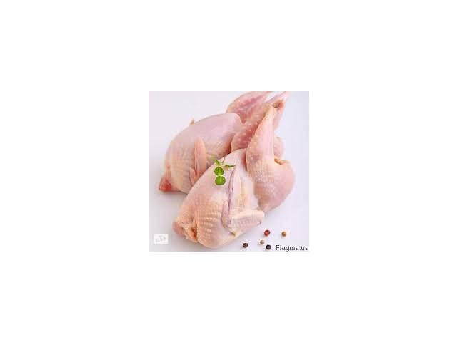 Продам мясо перепелов- объявление о продаже  в Житомире