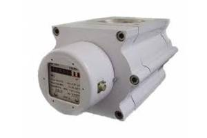 Счетчики газа роторные G100 DN80 1/100