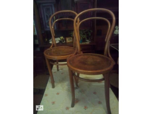 Два стула Венский типа Тонет- объявление о продаже  в Львове