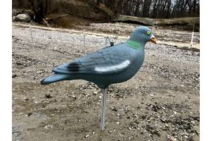 Летящая вяхирь, парящий голубь, витютень, вяхир, чучела муляжи витютня