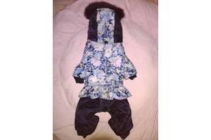 Комбинезон для собачки-девочки, комбенизон, одежда, костюм