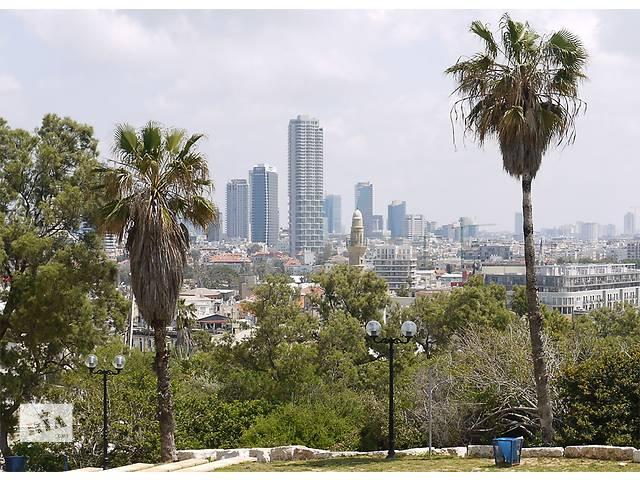 купить бу Легальное трудоустройство в Израиле в Одессе