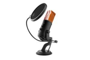 Заказать озвучку аудио и видео материала