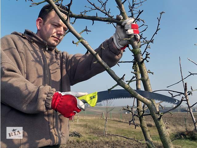 купить бу Обрезка сада  в Украине