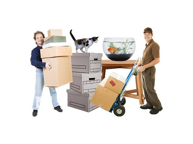 продам Перевозка мебели Черкассы, перевозка вещей по Черкассам, грузчики недорого в Черкассах бу в Черкассах