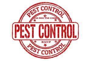 Пест контроль для підприємств. PEST CONTROL. HACCP. ISO. Хассп. Розробка ISO