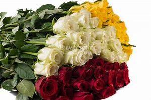 Цветы опт желтые воды — img 2