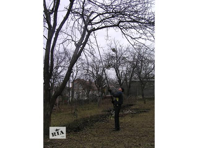 Предлагаем профессиональную обрезку деревьев- объявление о продаже  в Харькове