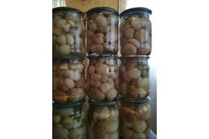 Продам грибы в ассортименте