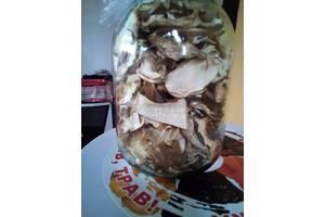 Белый гриб Карпатский сушеный