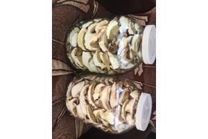 Продам белые ,сушеные грибы