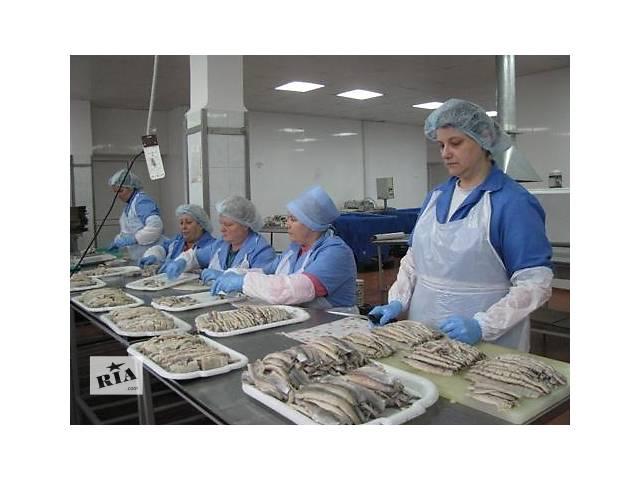 бу Работа в Норвегии на рыбзаводе без о\р и знания языка  в Украине