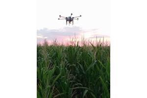 Десикация подсолнуха, кукурузы при помощи дронов. Выезжаем в любую точку Украины. Обработка до 600 гектаров в день.