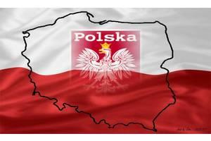 Дипломированный учитель польского языка