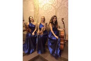 Музыканты  Lastara трио квартет скрипка