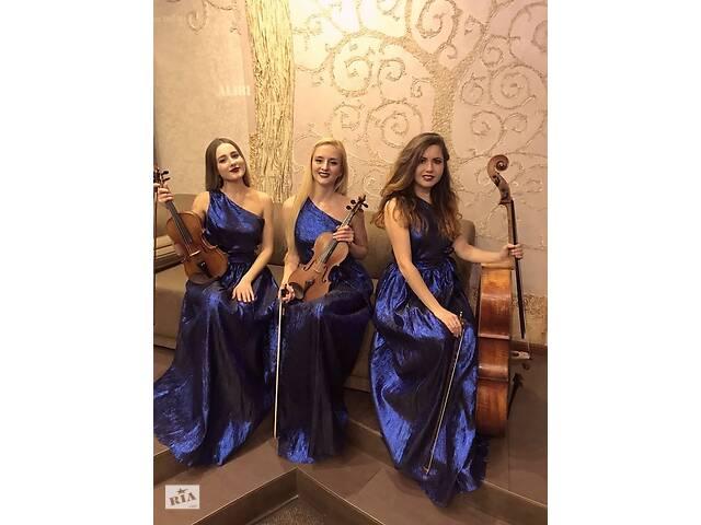 купить бу Музыканты  Lastara трио квартет скрипка   в Украине