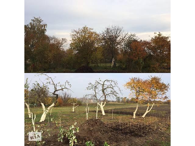 продам Обрізка дерев, догляд за садом. Культивація мотоблоком. Культивация бу  в Украине