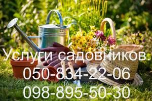 Пропонуємо повний комплекс послуг по догляду за садом