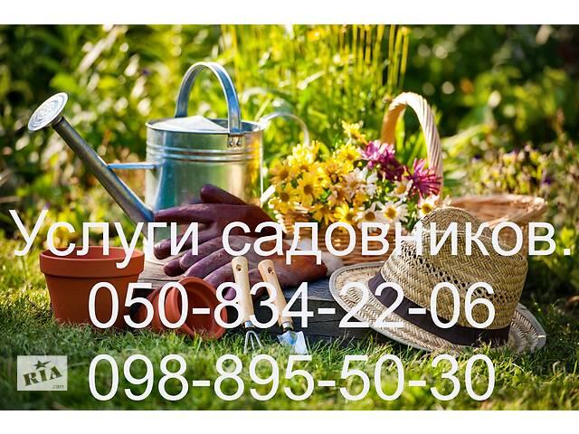 Предлагаем полный комплекс услуг по уходу за садом- объявление о продаже  в Харькове