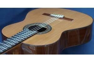 Уроки игры на классической акустической гитаре укулеле Днепр Днипро Дніпро Dnipro