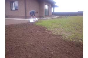 Занимаемся посевом газона.