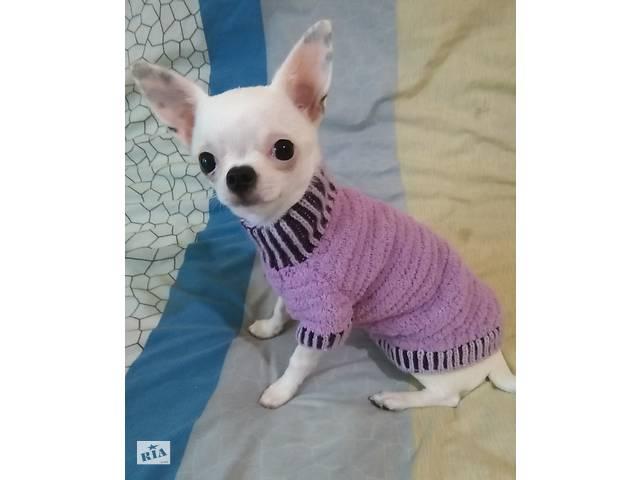 продам Сиреневый плюшевый свитерок для кошек и собачек Ручное вязание бу в Киеве