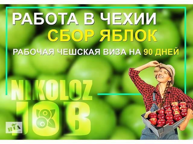 продам Работа в Чехии бу  в Україні