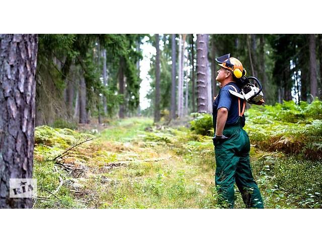 бу Різноробочі в ліс(Польща)  в Украине