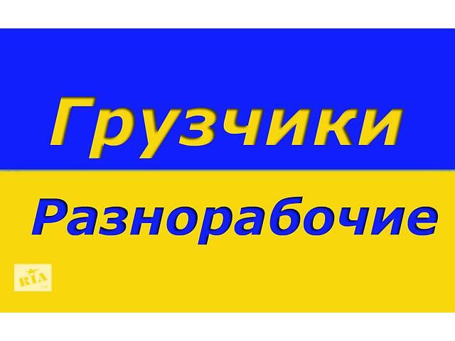 купить бу Заказать услуги грузчиков и разнорабочих в Павлограде  в Украине
