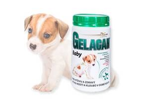 Гелакан Бейбі (Gelacan Baby)- мінеральна добавка для цуценят і вагітних сук (порошок)